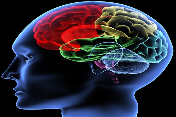 Increase Of Stroke In Younger People